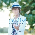 re-fly cover