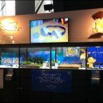 Megahobby expo 06